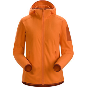 Arc'teryx Delta LT Hoody Women Awestruck